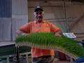 biostalis_hydroponics_fodde